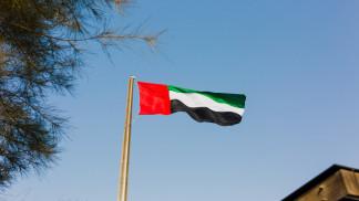 الإمارات تجري تغييرات وزارية تشمل وزيرا جديدا للمالية ووزيرة للبيئة